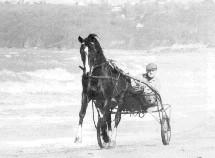 Idéal entrainement sur la plage de St Jean