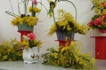 Produits dérivés du mimosa
