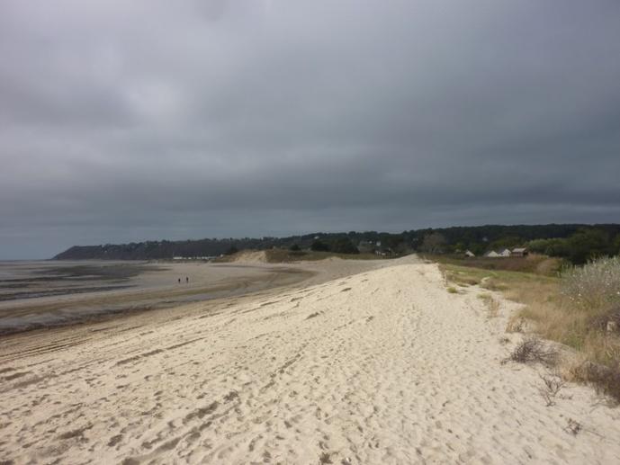Interdiction des plages de Saint Jean le Thomas aux chevaux (arrété municipal du 25/10/2018)