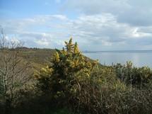 La baie vue du G.R. 223