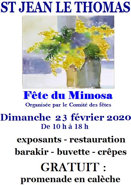 Fête du mimosa 2020  à St Jean le Thomas