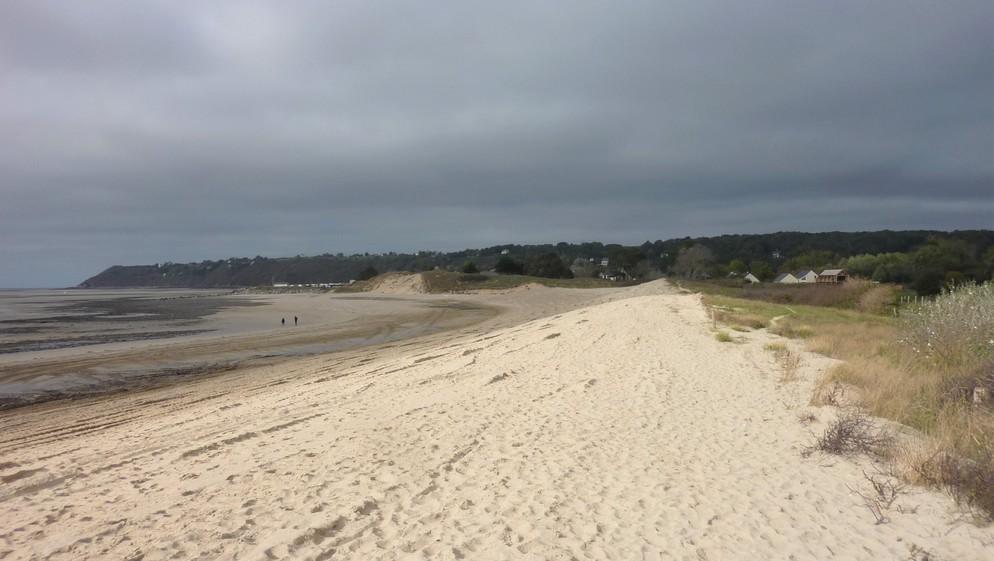 Le long du littoral, le cordon dunaire...
