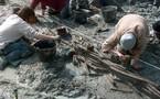 Les pêcheries préhistoriques de Saint Jean le Thomas