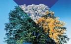Diaporamas et vidéos: Les 4 saisons à Saint-Jean-le-Thomas